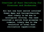 overview of host switching for pinworms and hookworms