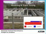 modeling tracer testing