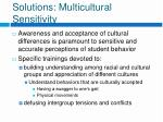 solutions multicultural sensitivity
