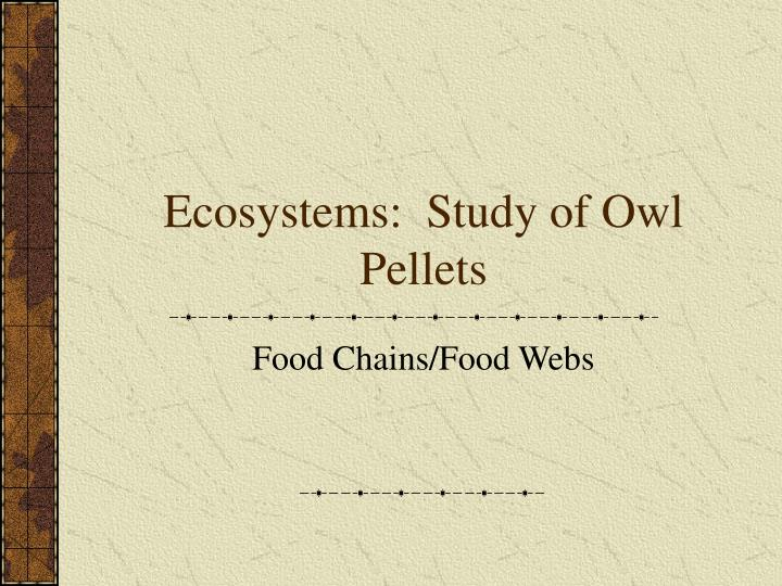 ecosystems study of owl pellets n.