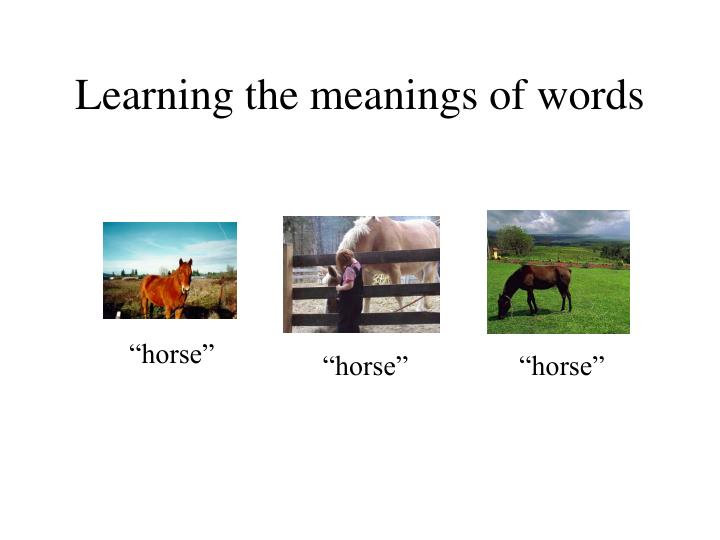 Learning the meanings of words