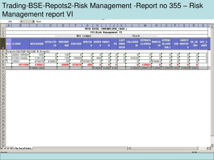 Trading-BSE-Repots2-Risk Management -Report no 355 – Risk Management report VI