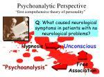 psychoanalytic perspective1