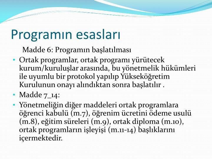 Programın esasları
