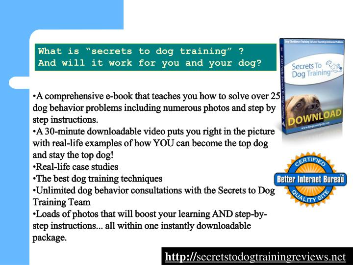 """What is """"secrets to dog training"""" ?"""