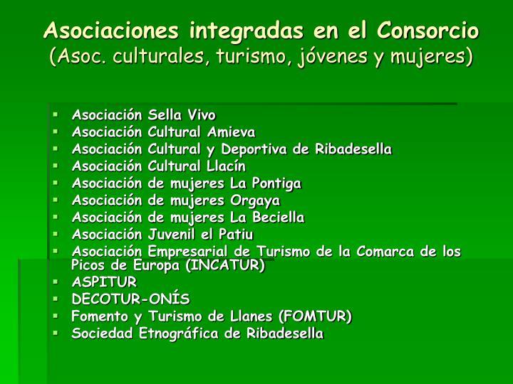 Asociaciones integradas en el Consorcio