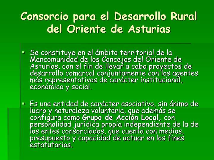 Consorcio para el Desarrollo Rural del Oriente de Asturias