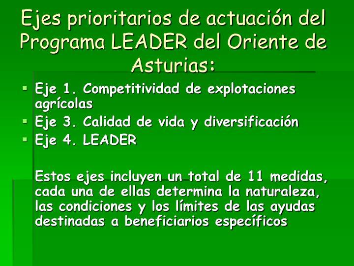 Ejes prioritarios de actuación del Programa LEADER del Oriente de Asturias