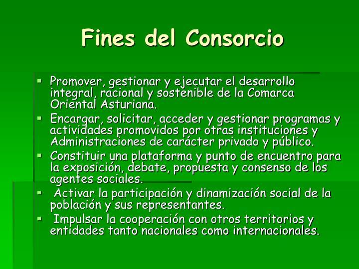 Fines del Consorcio