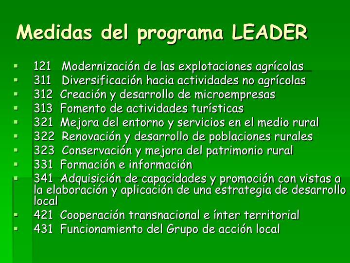 Medidas del programa LEADER