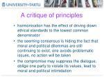 a critique of principles