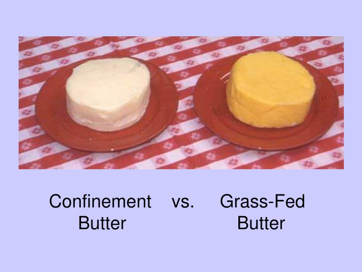 Confinement    vs.     Grass-Fed