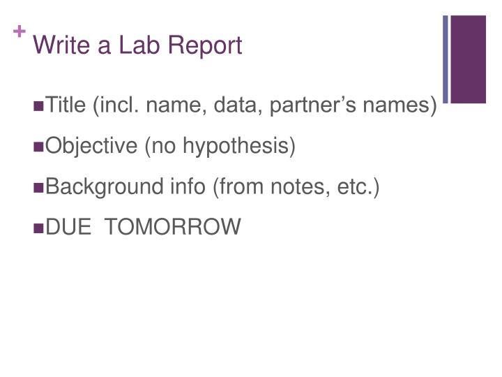 Write a Lab Report