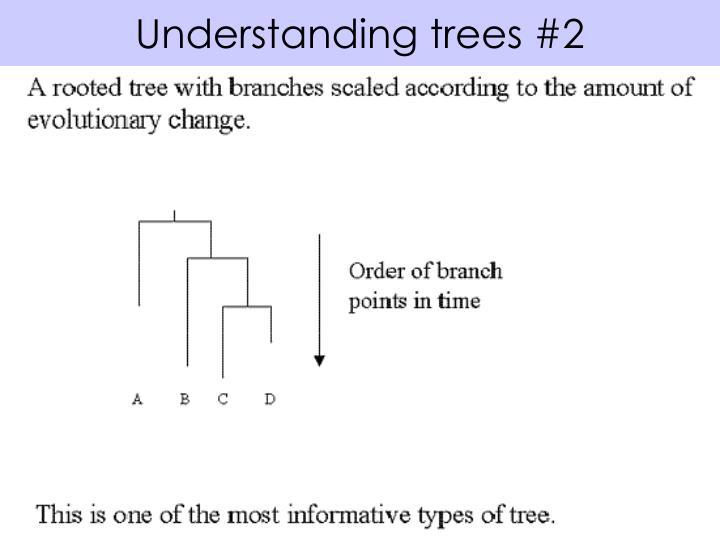 Understanding trees #2