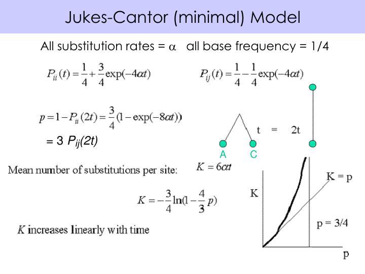 Jukes-Cantor (minimal) Model