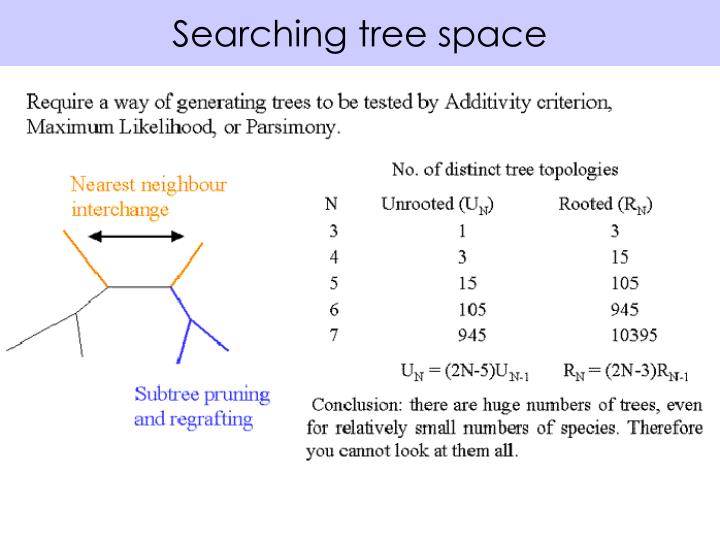 Searching tree space