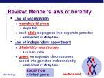 review mendel s laws of heredity