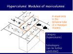 hypercolums modules of maxicolumns1