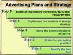 advertising plans and strategy2