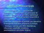 amn sias hipocampais