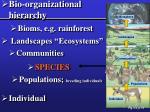bio organizational hierarchy
