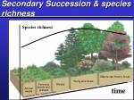 secondary succession species richness