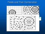 fields and their combination