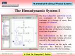 the hemodynamic system i
