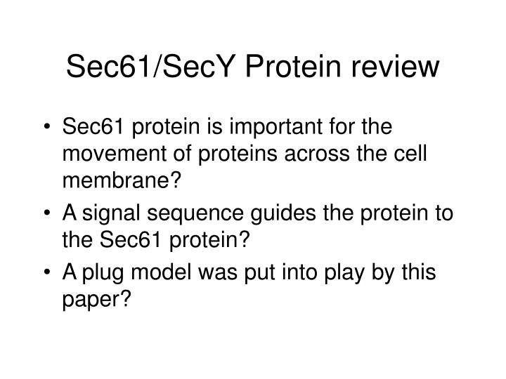 sec61 secy protein review n.