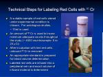 technical steps for labeling red cells with 51 cr