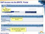 sap access via the brite portal