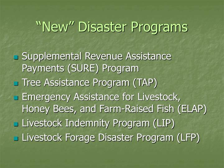 """New"" Disaster Programs"