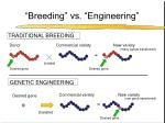 breeding vs engineering