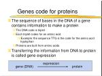 genes code for proteins