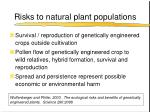 risks to natural plant populations