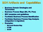 bdv artifacts and capabilities