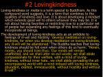 2 lovingkindness