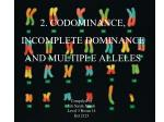 2 codominance incomplete dominance and multiple alleles