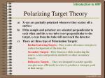 polarizing target theory