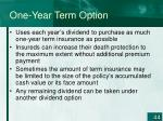 one year term option