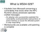 what is ms04 029