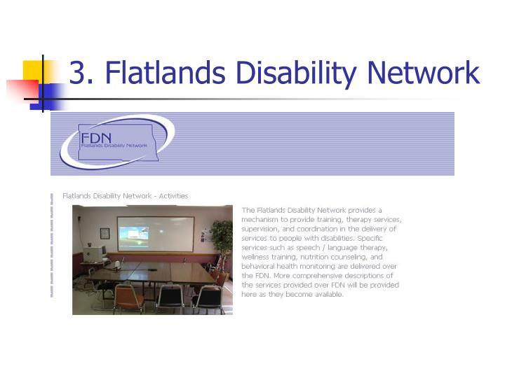 3. Flatlands Disability Network