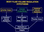 body fluid volume regulation hypothesis