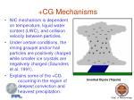 cg mechanisms4