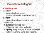 gramatick kateg rie3