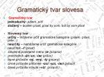 gramatick tvar slovesa