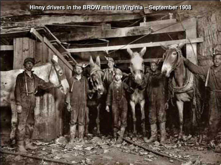 Hinny drivers in the BROW mine in Virginia – September 1908