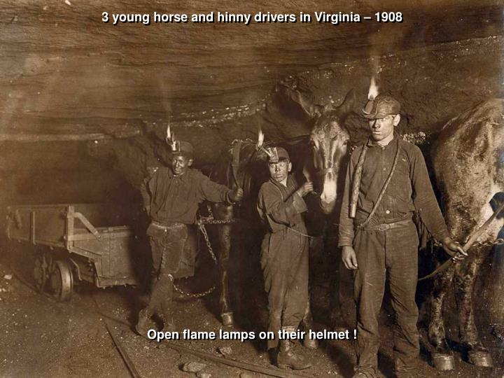 3 young horse and hinny drivers in Virginia – 1908