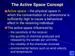 the active space concept