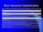 burn severity classification